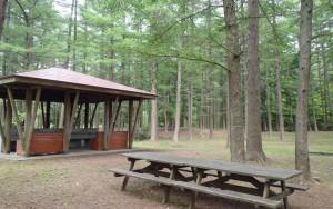 美山キャンプ場