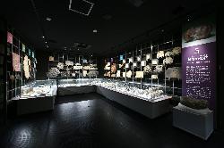 フォッサマグナミュージアム 第5展示室 魅惑の化石