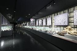 フォッサマグナミュージアム 第6展示室 魅惑の鉱物