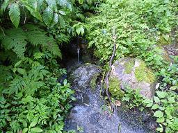 中俣小屋水場