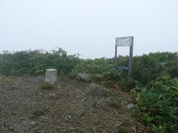 黒岩山山頂・珍しいサルのコシカケ