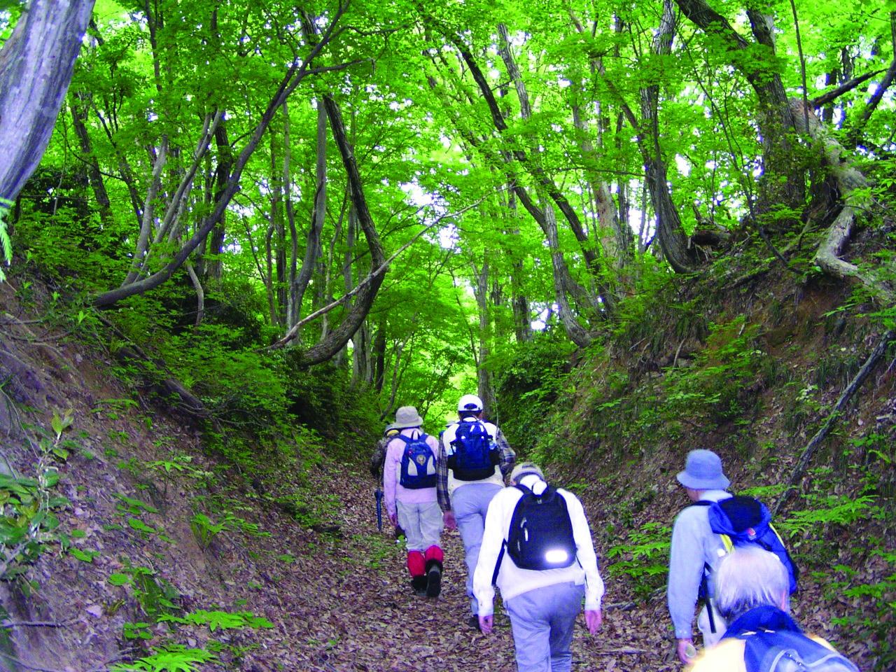 北陸新幹線で行く糸魚川【中止】秋の塩の道を歩く