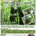 専門ガイドと行く大所の森トレッキング